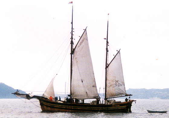 Gurine under segl på byfjorden – Bergen